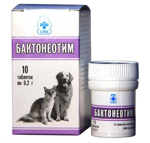 цистит у котенка симптомы лечение