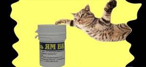 лишай у котят симптомы и лечение в домашних