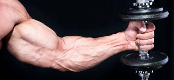 молочная кислота в мышцах симптомы и лечение