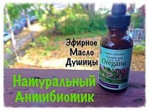 молочница симптомы и лечение травами