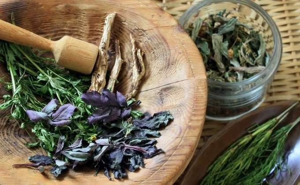 шейный остеохондроз симптомы и лечение травами