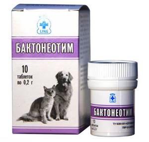 симптомы цистита у котов лечение