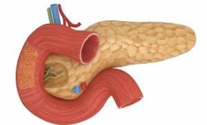 воспаление жкт симптомы лечение