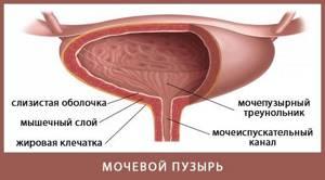 цистит у девочки 3 года симптомы и лечение