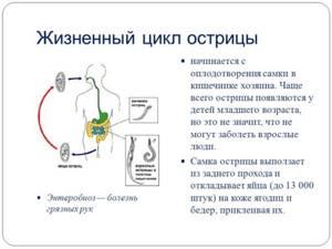 острицы у ребенка симптомы лечение