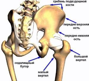 воспаление седалищного бугра симптомы и лечение