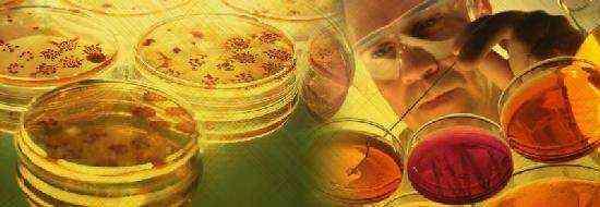 грибковый ринит у ребенка симптомы и лечение