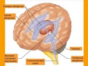 внутричерепное давление симптомы и лечение у ребенка