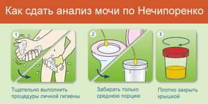 белок в моче у ребенка причины симптомы лечение и профилактика