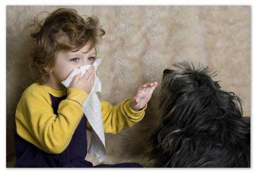 бронхит у ребенка симптомы и лечение с температурой