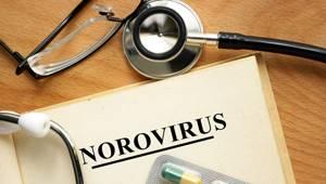 нора вирус симптомы у детей лечение