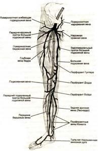 плохое кровообращение в ногах симптомы и лечение