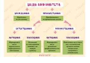 слабый иммунитет у ребенка причины симптомы лечение и профилактика