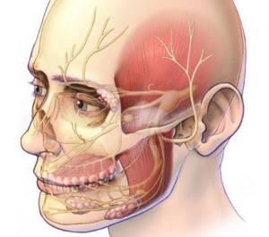 воспаление тройничного нерва на лице у ребенка симптомы и лечение