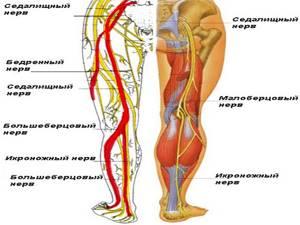 защемление нерва ноги симптомы и лечение в домашних условиях